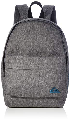 Quiksilver Mens SMALL EVERYDAY EDITION Backpack, LIGHT GREY HEATHER, 1 SIZE