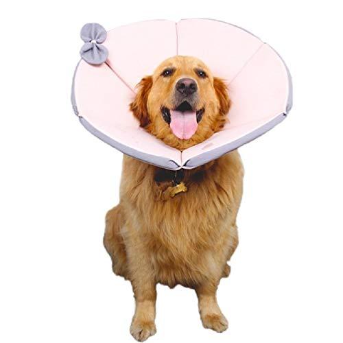Incdnn Collar de protección ajustable para gatos y perros con cono cómodo para recuperar mascotas, antimordeduras y antifugas.