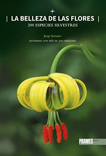 La Belleza De Las Flores: 200 ESPECIES SILVESTRES