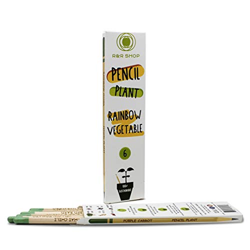 R&R SHOP Pencil Plan Bleistifte, pflanzbar, mit speziellen Samen, 100 % natürlich, hochwertig, kompostierbar, 6 Stück