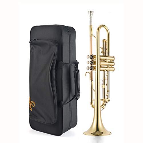 Trompetas Instrumentos de Viento Metal Trumpet B-Flat Latón Instrumento de Viento Sonido estupendo Cornet Factory Ventas directas Garantía de por Vida (Color : Gold)