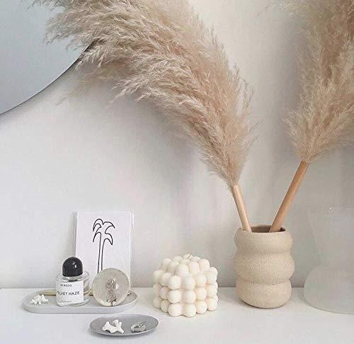 pah-macy Pampasgras, natürlich getrocknet - Plant Wedding Flower Bunch for Home Decorations vom Hochzeitstrend zum Interior-Liebling! (Naturfarben)-10 große graue Schilfrohre_Trockene Zweige