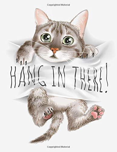 hang in there kitty