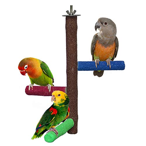 RYPET Sitzstange für Papageien und andere kleine Vögel, raue Oberfläche, Sandstangen, Naturholzständer für Sittiche und andere kleine Vögel