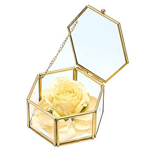 Sumnacon Joyero decorativo de cristal, joyero organizador de maquillaje, caja de regalo, expositor para pendientes, collares, anillos (dorado, grande)