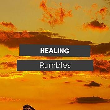Healing Rumbles, Vol. 2