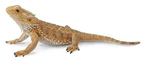 Collecta Bearded Dragon Figur Lizard