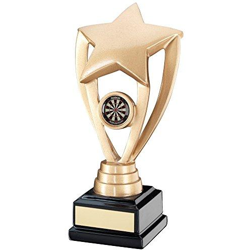 17,1cm Kunstharz Star Darts Trophy mit Darts Gravur (bis zu 30Buchstaben jr3-rf16a