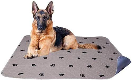 PUPTECK 2 Pack Washable Dog Pee Pads - Waterproof and Reusable Whelping Mat for Puppy Housebreaking and Travel