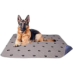PUPTECK 2 Pack Washable Dog Pee Pads – Waterproof and Reusable Whelping Mat for Puppy Housebreaking and Travel