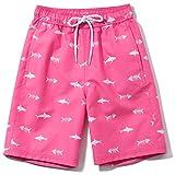 TSLA Boys Swim Trunks, Quick Dry UPF 50+ Beach Board Swim Shorts, Swimsuit Swimwear with Inner Mesh Liner, Graphic(bsb45) - Fish Pink, 3X-Small