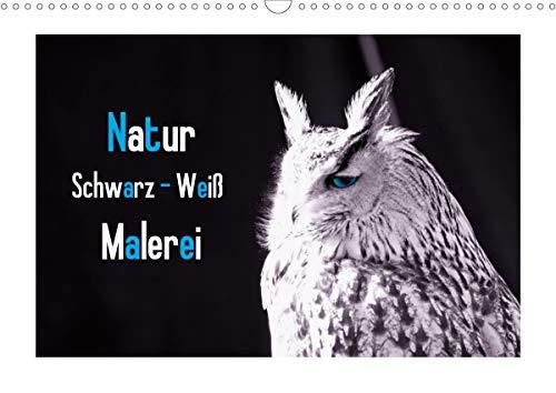 Natur schwarz - weiß Malerei (Wandkalender 2021 DIN A3 quer)