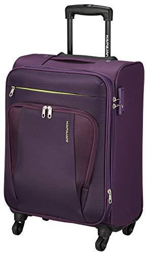 [カメレオン] スーツケース キャリーケース サバンナ スピナー 55/20 TSA EXP 機内持ち込み可 保証付 43L 2.8kg パープル
