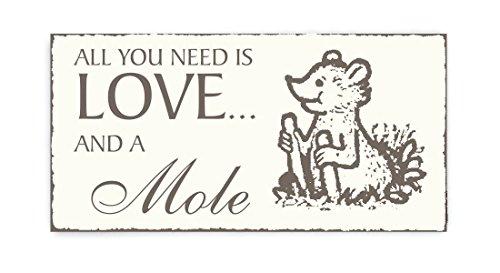 SCHILD Dekoschild « All you need is LOVE and a MOLE » Maulwurf Vintage houten schild deurschild dierentuin park