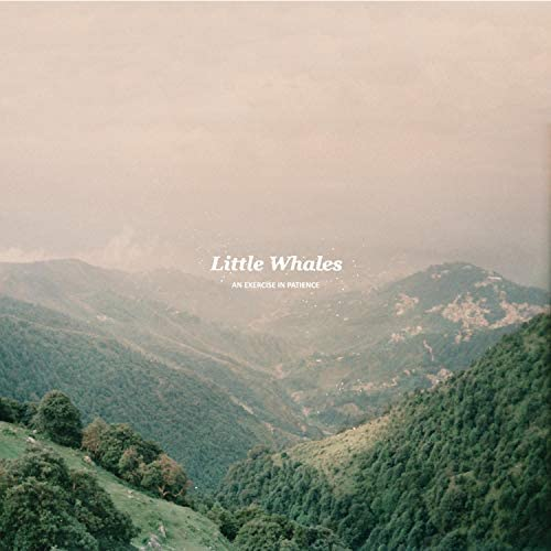 Little Whales