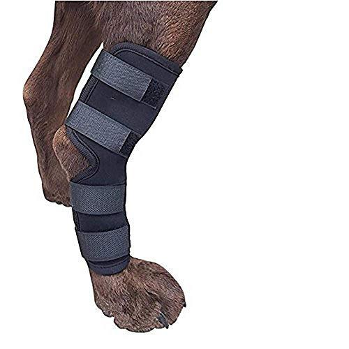 Doublehero Hunde Gelenkschutz,Handgelenk Bandage,1 Paar Hund Karpal Gelenk Bandage Pet Hunde-hinten Bein Hock Wunden Wrap (S, Schwarz)