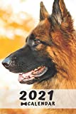 German Shepherd Calendar 2021: Perfect for Notes and Planning, Monthly and Weekly (2021 Planner, Diary)