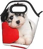 Cachorro De Perro Con Un Corazón Rojo Lindo Animal Divertido Impreso Lonchera Térmica De Amplia Apertura De Bolsa Del Almuerzo Almuerzo Bolso De Mano - Ligero, Aislante Y Reutilizables