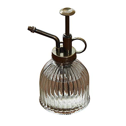 JOJYO Pflanzensprüher,Sprühflasche Glas Blume Wasser Spray Flasche Kann Topf Vintage Stil Spritzer Pflanze Zerstäuber Mit Pumpe Dekorative Glas (Transparent)