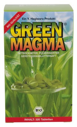 Green Magma Gerstengras Tab. 320St.