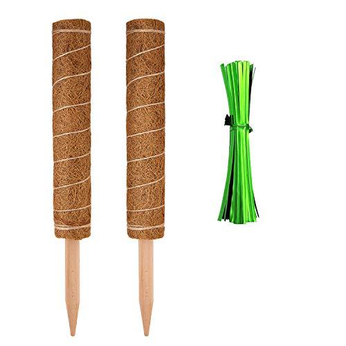 LUTER 42cm 2 Pezzi Bastone Fibra di Cocco Bastone Muschiato con Fascette da Giardino da 16 Pezzi Bastoncino da Muschio per Pianta Rampicante Piante Rampicanti