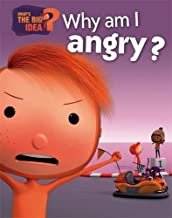 What's the Big Idea?: Why Am I Angry?