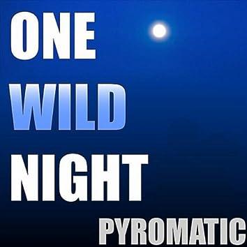 ONE WILD NIGHT - SINGLE