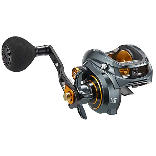 Piscifun Alijoz Size 300 Baitcasting Reels Low Profile Baitcaster Aluminum Frame Baitcast Fishing Reel, 33lb Drag 8.1:1 Gear Ratio Freshwater Saltwater Power Handle Casting Reels (Right Handed)