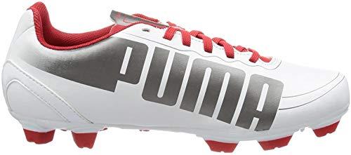 Puma evoSPEED 5.2 FG Jr 102887, Unisex-Kinder Fußballschuhe, Schwarz (white-aged silver-high risk 03), EU 38.5 (UK 5.5) (US 6.5)