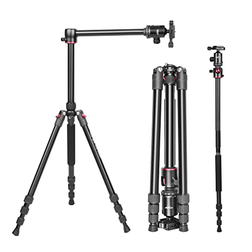 Digitek DTR 520 BH (60 Inch) Professional Aluminum Tripod Cum Monopod with Swivel Pan Head, for DSLR Camera | Maximum Operating...