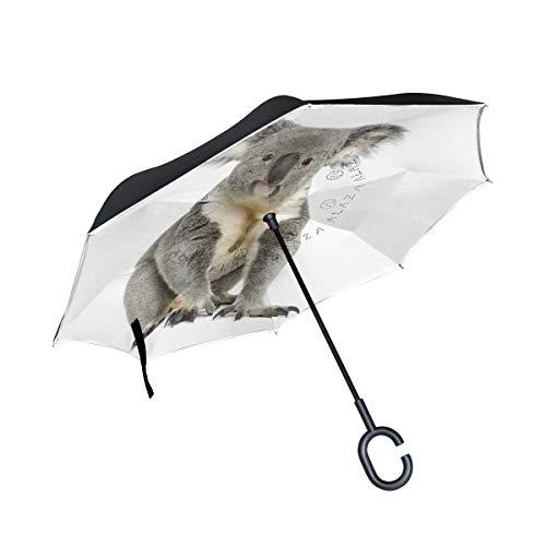Orediy - Paraguas invertido de doble capa para hombre, con osito koala, para el interior del coche, grande, anti rayos UV, resistente al viento, lluvia y sol