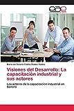Visiones del Desarrollo: La capacitación industrial y sus actores