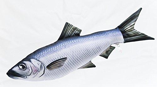 Decoratief kussen in de vorm van een echte vis, mini-clupeivorm (haring/sardine)