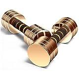 Qinmo Combinación Dumbbell Desmontable, Libre de formación del Platino Peso músculo del Brazo Pesas, el Ejercicio for Entrenamiento de la Base y la Fuerza (Size : 10kg)