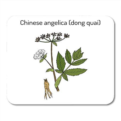 Luancrop Mausunterlage-Wurzel Angelica Sinensis Dong Quai weibliches Ginseng-Heilkraut Mousepad für...