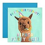 Central 23 Carte d'anniversaire humoristique « Alpaga Birthday Hat » – Carte d'anniversaire humoristique – Pour les amis – Motif mignon pour les enfants – Livré avec des autocollants amusants