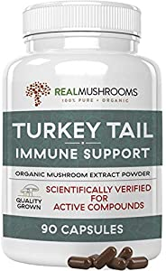 Turkey Tail Mushroom Extract for Immune Support, Wellness & Vitality, 90ct Caps Organic & Vegan Turkey Tail Capsules, Safe for Pets, Verified Levels of Beta-Glucans & Non-GMO, 45 Day Supply