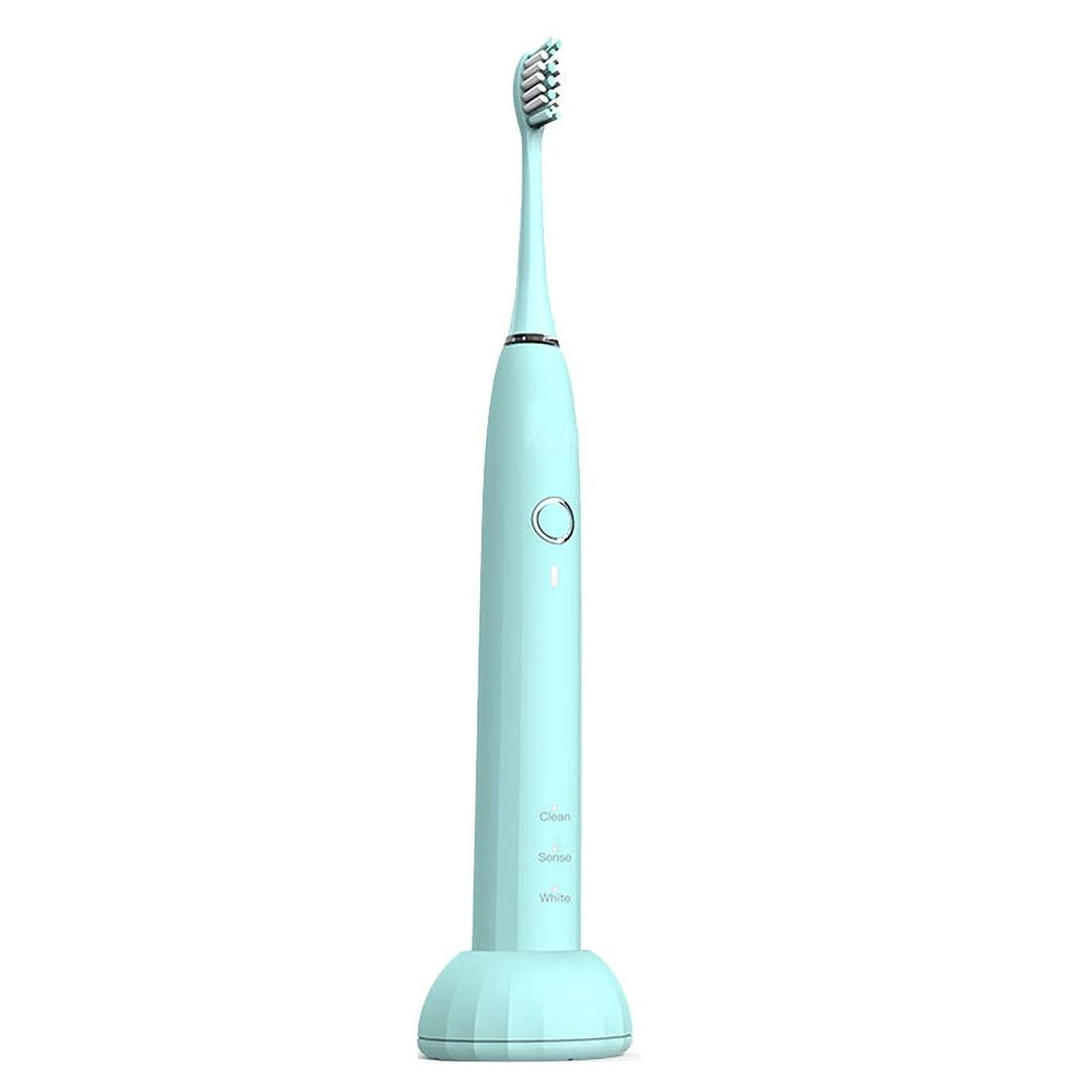 意欲番号減らす自動歯ブラシ 無線誘導充電ホルダーと4つの交換用ヘッド付き成人電動歯ブラシ (色 : ピンク, サイズ : Free size)
