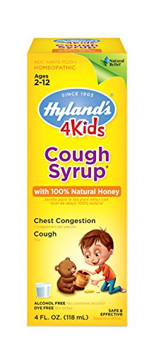 Cough Syrup for Kids Ages 2+ 100% Honey for Kids by Hyland's, Decongestant, Natural Relief of Cough and Chest Congestion, 4 Fl Oz