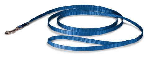 Premier Leash, 3/8 by 6-Feet, Royal Blue