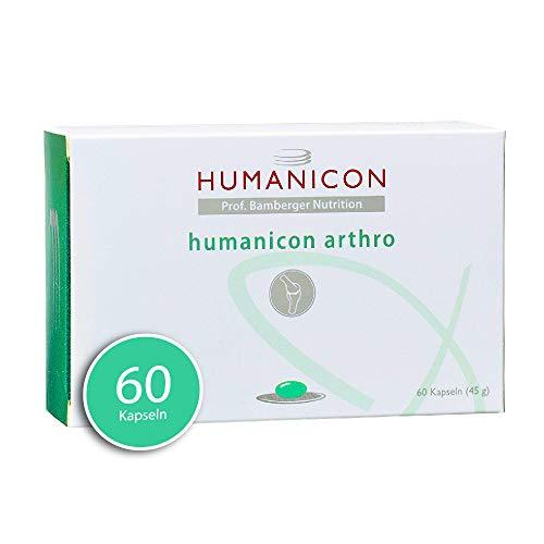 HUMANICON PROF. BAMBERGER NUTRITION arthro I MSM Kapseln mit Glucosamin und Chondroitin I Knorpel, Gelenke, Arthrose