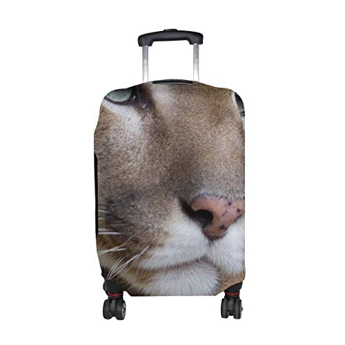 Eyes Predator Pattern Print Travel Luggage Protector Baggage Suitcase Cover Fits 18-21 Inch Luggage