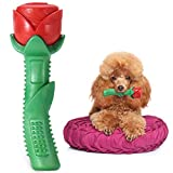 ucho Dog Chew Toys - Puppy Toy Durable Rose Chew Toys for Small & Medium Dog,Enchanted Rose Toy Gift for Mothers Day,Christmas Day and Dogs' Birthday Day, Valentine's Day, Cleaning Teeth Toys