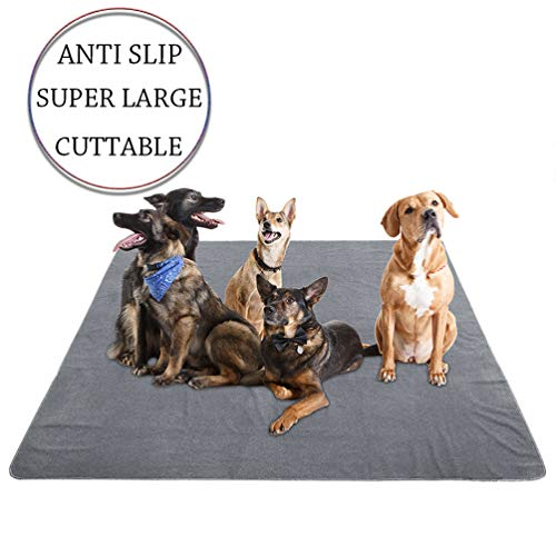 Dog Training Pads in Crate