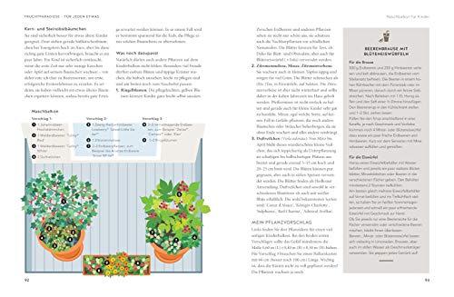 Mein City-Obstgarten: Fruchtiges Naschvergnügen für Balkon & Terrasse (GU Garten Extra) - 3
