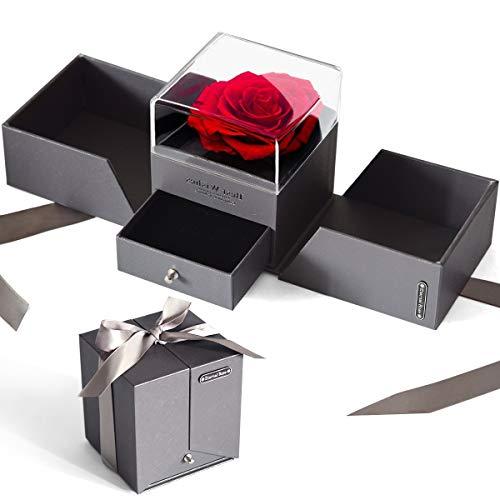 iteaauk Ewige Rose Geschenkbox Schöne und das Biest Ewige Rose im Schmuckschatulle Konservierte Blumen Rosenbox für Frauen zum Valentinstag Muttertag Geburtstag Jahrestag Geschenk für Sie (Grau)