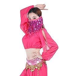 Rose Sequin Beaded Belly Dance Face Veil