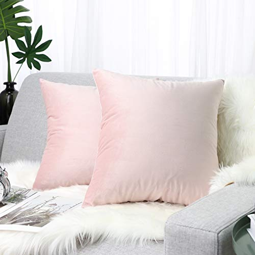 Cotton Hypoallergenic Ball Hollowfibre 24x24-inch New Square Pillows Set of 2