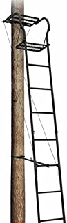 Big Dog Treestands Skyraider Tree Stand, 15-Feet