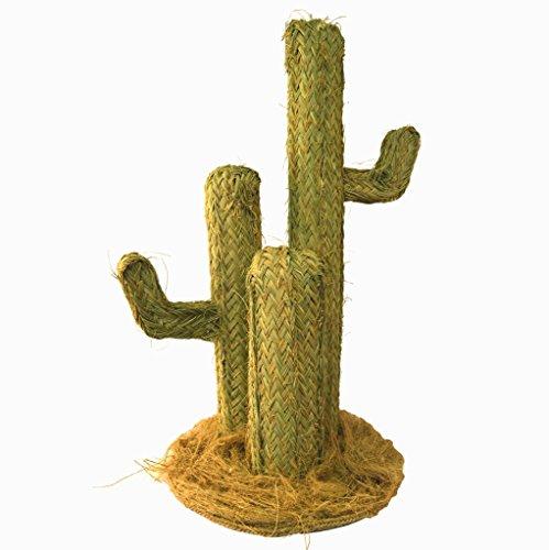 Cactus Esparto - BicocaWeb